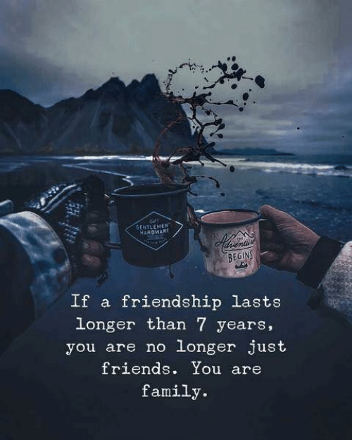 Just Friends: GENTLEMEN  HARDWARE  BEGINS  If a friendship lasts  longer than 7 years,  you are no longer just  friends. You are  family