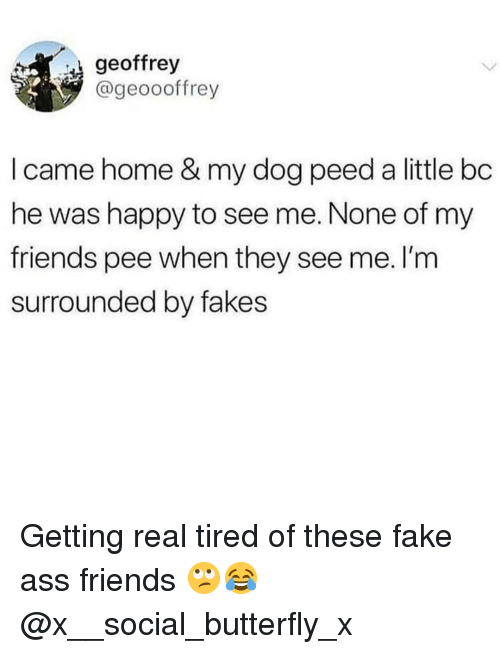 Ass, Fake, and Friends: geoffrey  @geoooffrey  I came home & my dog peed a little bc  he was happy to see me. None of my  friends pee when they see me. I'm  surrounded by fakes Getting real tired of these fake ass friends 🙄😂 @x__social_butterfly_x