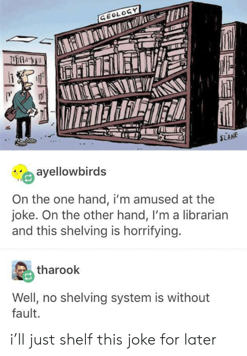 One, Geology, and System: GEOLOGY  IETERRET  SLANE  ayellowbirds  On the one hand, i'm amused at the  joke. On the other hand, I'm a librarian  and this shelving is horrifying.  tharook  Well, no shelving system is without  fault. i'll just shelf this joke for later