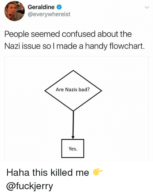 Nazy: Geraldine  @everywhereist  People seemed confused about the  Nazi issue so I made a handy flowchart.  Are Nazis bad?  Yes. Haha this killed me 👉 @fuckjerry