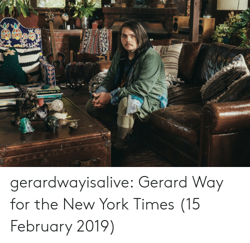 New York Times: gerardwayisalive:  Gerard Way for the New York Times (15 February 2019)