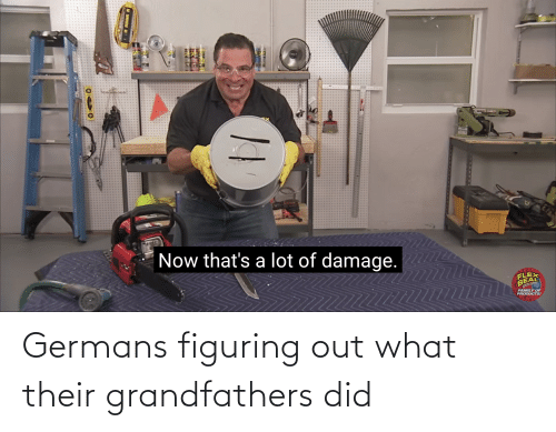germans: Germans figuring out what their grandfathers did