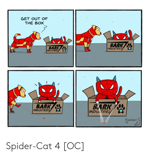 the box: GET OUT OF  THE BOX  BARK  INDUSTRIES  BARK  INDUSTRIES  BARK  BARK  INDUSTRIES  INDUSTRIES Spider-Cat 4 [OC]