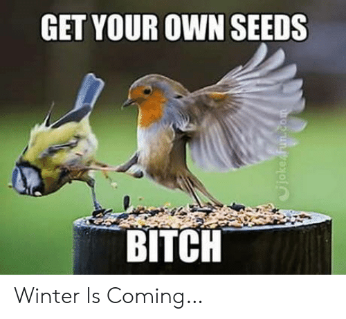 Bitch, Winter, and Fun: GET YOUR OWN SEEDS  BITCH  Cjoke fun.com Winter Is Coming…