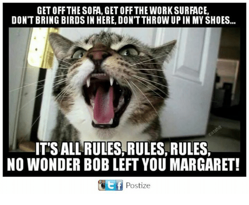 in-my-shoes: GETOFF THE SOFA, GET OFF THE WORK SURFACE,  DON'T BRINGBIRDS IN HERE, DONTTHROW UP IN MY SHOES...  ITTSALL RULES, RULES, RULES  NO WONDER BOB LEFT YOU MARGARET!  GEtf Postize