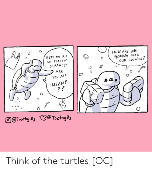 snort: GETTING RİD  OF PLASTIC  STRAWS>  ARE  You ALL  HOW ARE WE  NNA SNoRT  OUR COCAINE  INSANE  团@Toothy.Bj  @ToothyBj Think of the turtles [OC]