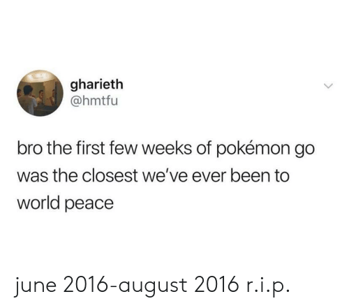 Pokemon GO: gharieth  @hmtfu  bro the first few weeks of pokémon go  was the closest we've ever been to  world peace june 2016-august 2016 r.i.p.