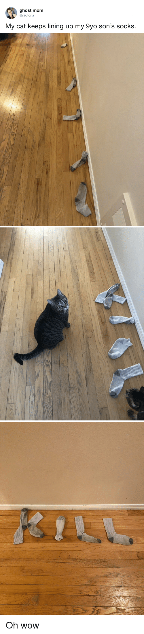 Wow, Ghost, and Mom: ghost mom  @radtoria  My cat keeps lining up my 9yo son's socks. Oh wow
