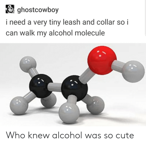 Cute, Alcohol, and Who: ghostcowboy  i need a very tiny leash and collar so i  can walk my alcohol molecule Who knew alcohol was so cute