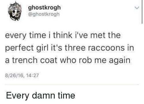 Perfect Girl, Girl, and Time: ghostkrogh  @ghostkrogh  every time i think i've met the  perfect girl it's three raccoons in  a trench coat who rob me again  8/26/16, 14:27 Every damn time