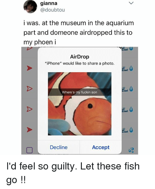 "acception: gianna  @doubtou  i was. at the museum in the aquarium  part and domeone airdropped this to  my phoen i  AirDrop  ""iPhone"" would like to share a photo  Where's my fuckin son  Decline  Accept I'd feel so guilty. Let these fish go !!"