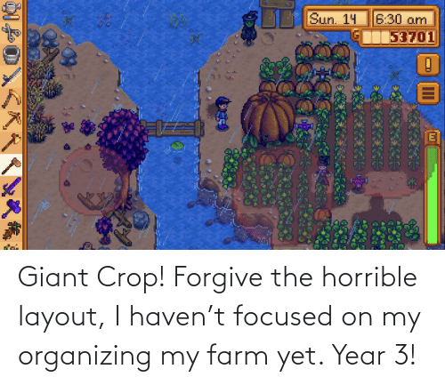 Organizing: Giant Crop! Forgive the horrible layout, I haven't focused on my organizing my farm yet. Year 3!