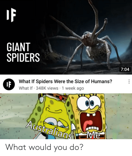 Giant, Spiders, and You: GIANT  SPIDERS  7:04  What If Spiders Were the Size of Humans?  IF  What If · 348K views · 1 week ago  Australians  Me What would you do?