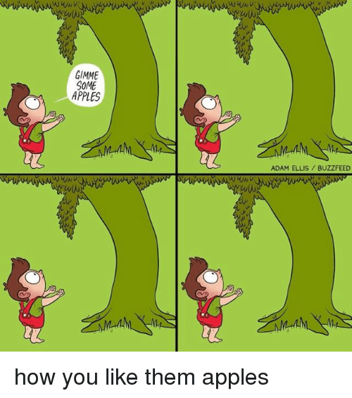 adamant: GIMME  SOME  APPLES  ADAM ELLIS BUZZFEED how you like them apples