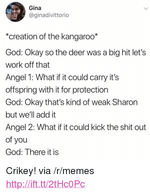 "Deer, God, and Memes: Gina  @ginadivittorio  *creation of the kangaroo*  God: Okay so the deer was a big hit let's  work off that  Angel 1: What if it could carry it's  offspring with it for protection  God: Okay that's kind of weak Sharon  but we'll add it  Angel 2: What if it could kick the shit out  of you  God: There it is <p>Crikey! via /r/memes <a href=""http://ift.tt/2tHc0Pc"">http://ift.tt/2tHc0Pc</a></p>"