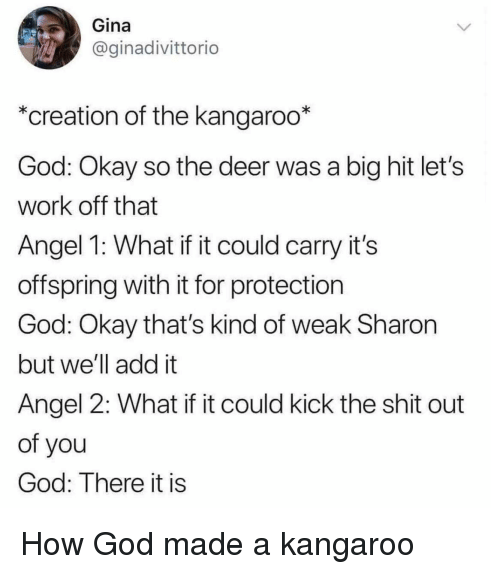 kangaroo: Gina  @ginadivittorio  *creation of the kangaroo*  God: Okay so the deer was a big hit let's  work off that  Angel 1: What if it could carry it's  offspring with it for protection  God: Okay that's kind of weak Sharon  but we'll add it  Angel 2: What if it could kick the shit out  of you  God: There it is How God made a kangaroo