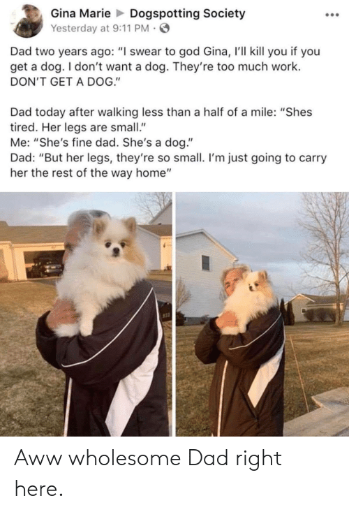 """9/11, Aww, and Dad: Gina MarieDogspotting Society  Yesterday at 9:11 PM  Dad two years ago: """"I swear to god Gina, r'll kill you if you  get a dog. I don't want a dog. They're too much work.  DON'T GET A DOG.""""  Dad today after walking less than a half of a mile: """"Shes  tired. Her legs are small""""  Me: """"She's fine dad. She's a dog.""""  Dad: """"But her legs, they're so small. I'm just going to carry  her the rest of the way home""""  st3 Aww wholesome Dad right here."""