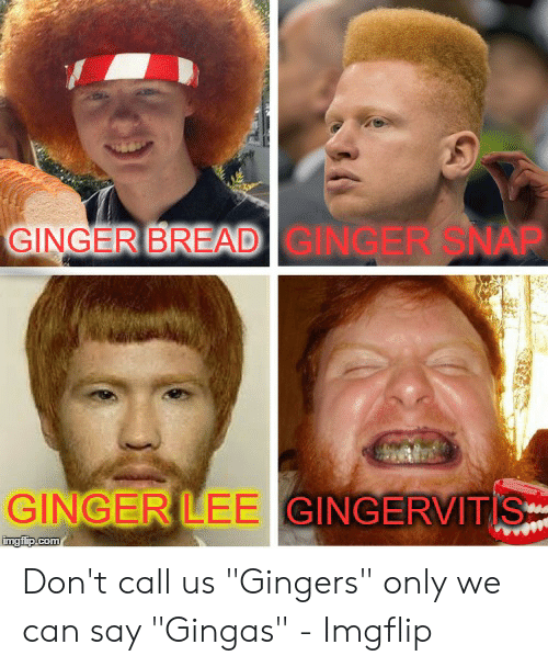 """Ginger Snap Meme: GINGER BREAD GINGER SNAP  GINGER LEE GINGERVITIS  imgflip.com Don't call us """"Gingers"""" only we can say """"Gingas"""" - Imgflip"""
