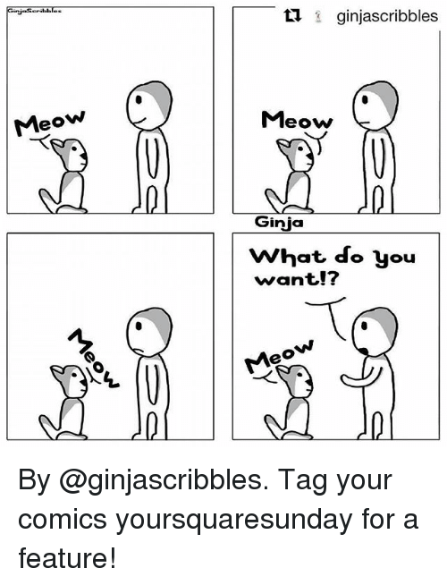 Meowe: GinjaSeribbles  17 ginjascribbles  Meow  Ginja  What do you  want!?  Meow T* By @ginjascribbles. Tag your comics yoursquaresunday for a feature!