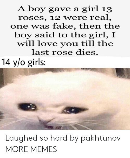 Dank, Fake, and Girls: girl 13  A boy gave a  roses, 12 were real,  one was fake, then the  boy said to the girl, I  will love you till the  last rose dies.  14 y/o girls: Laughed so hard by pakhtunov MORE MEMES