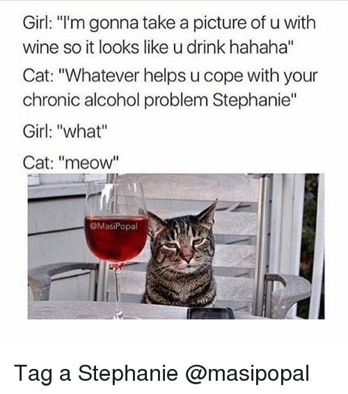 """Meowe: Girl: """"I'm gonna take a picture of u with  wine so it looks like u drink hahaha""""  Cat: """"Whatever helps u cope with your  chronic alcohol problem Stephanie""""  Girl: """"what""""  Cat: """"meow""""  @MasiPopal Tag a Stephanie @masipopal"""
