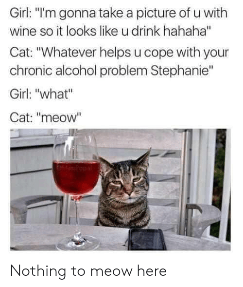 "Wine, Alcohol, and Girl: Girl: ""l'm gonna take a picture of u with  wine so it looks like u drink hahaha""  Cat: ""Whatever helps u cope with your  chronic alcohol problem Stephanie""  Girl: ""what""  Cat: ""meow"" Nothing to meow here"