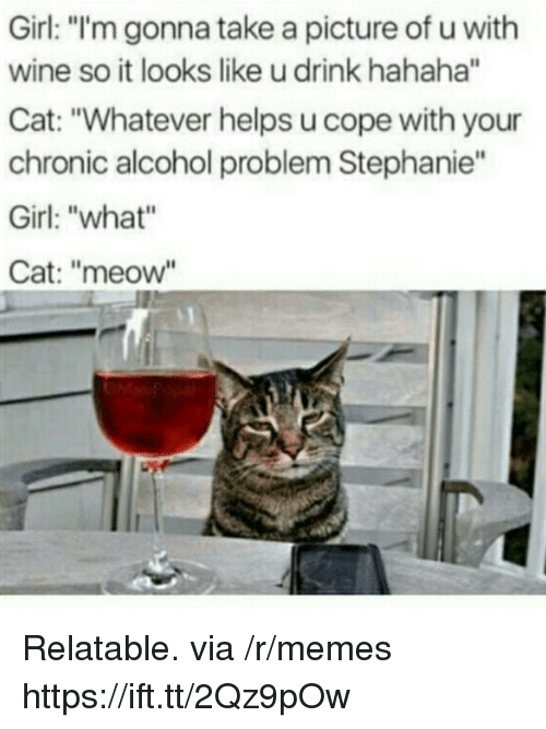 """Memes, Wine, and Alcohol: Girl: """"'m gonna take a picture of u with  wine so it looks like u drink hahaha""""  Cat: """"Whatever helps u cope with your  chronic alcohol problem Stephanie""""  Girl: """"what""""  Cat: """"meow Relatable. via /r/memes https://ift.tt/2Qz9pOw"""