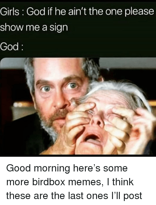 Girls, God, and Memes: Girls : God if he ain't the one please  show me a sign  God Good morning here's some more birdbox memes, I think these are the last ones I'll post