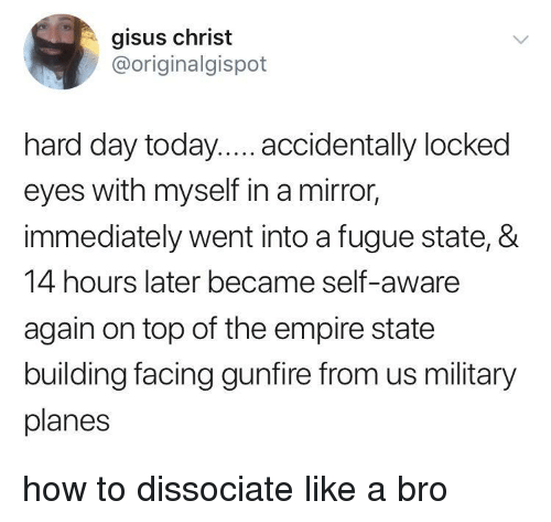 self aware: gisus christ  @originalgispot  hard day today.... accidentally locked  eyes with myself in a mirror,  immediately went into a fugue state, &  14 hours later became self-aware  again on top of the empire state  building facing gunfire from us military  planes how to dissociate like a bro