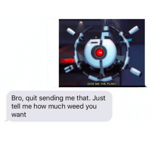 Weed, How, and You: GIVE ME THE PLANT  Bro, quit sending me that. Just  tell me how much weed you  want