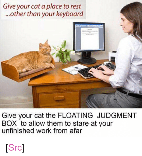 """from afar: Give your cat a place to rest  ...other than your keyboard  Give your cat the FLOATING JUDGMENT  BOX to allow them to stare at your  unfinished work from afar <p>[<a href=""""https://www.reddit.com/r/surrealmemes/comments/7rjblw/floating_judgment_box/"""">Src</a>]</p>"""