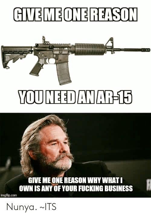 Ar 15: GIVEMEONE REASON  YOUNEED AN AR-15  GIVE ME ONE REASON WHY WHATI  OWN ISANY OF YOUR FUCKING BUSINESS  imgflip.com Nunya.          ~ITS
