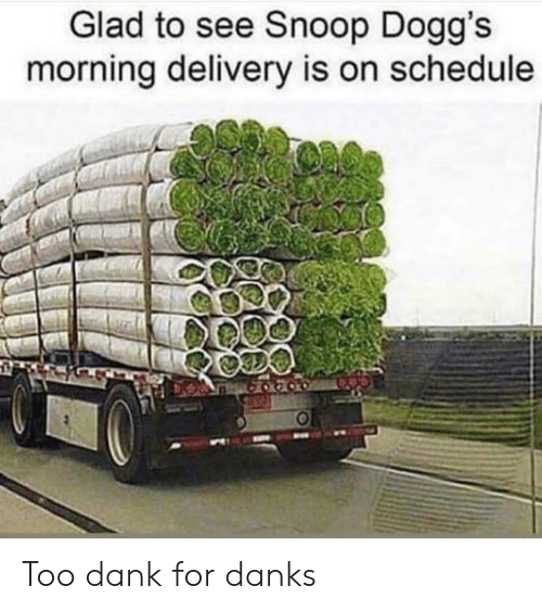 Danks: Glad to see Snoop Dogg's  morning delivery is on schedule Too dank for danks