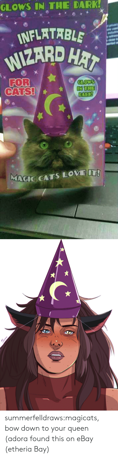 Bow Down: GLOWS IN THE DARK!  INFLATABLE  WIZARD HAT  FOR  CATS!  GLOWS  IN THE  DARK  MAGIC CATS LOVE T!   mme summerfelldraws:magicats, bow down to your queen (adora found this on eBay (etheria Bay)