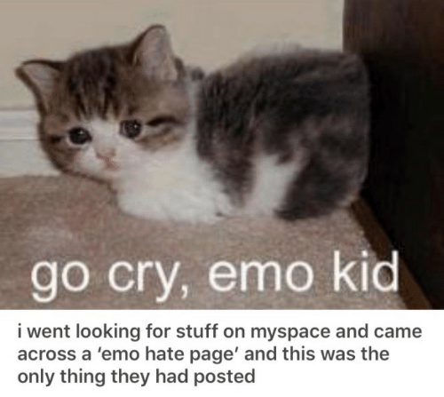 Emo, MySpace, and Stuff: go cry, emo kid  i went looking for stuff on myspace and came  across a 'emo hate page' and this was the  only thing they had posted