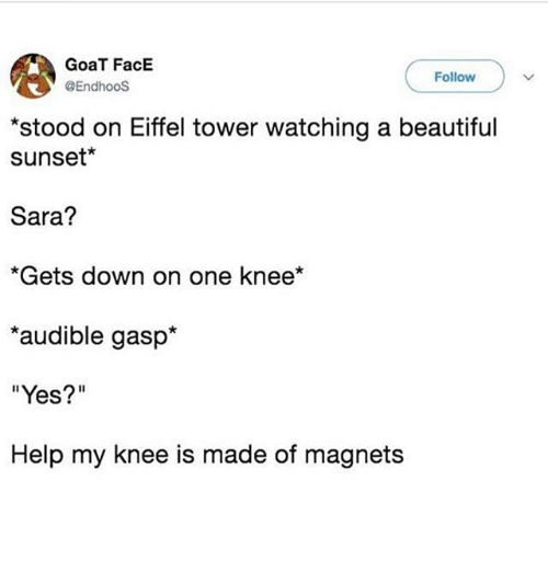 """Beautiful, Ironic, and Goat: GoaT FacE  @EndhooS  Follow  stood on Eiffel tower watching a beautiful  sunset*  Sara?  *Gets down on one knee*  audible gasp*  """"Yes?""""  Help my knee is made of magnets"""