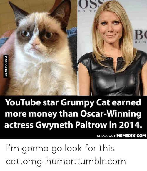 Youtube Star: GOBO  BC  HUG  YouTube star Grumpy Cat earned  more money than Oscar-Winning  actress Gwyneth Paltrow in 2014.  CНЕCK OUT MEМЕРIХ.COM  MEMEPIX.COM I'm gonna go look for this cat.omg-humor.tumblr.com