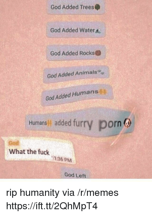 Animals, God, and Memes: God Added Trees  God Added Water  God Added Rocks  God Added Animals  God Added Humans  Humans added fur  y porn  God  What the fuck  136 PM  God Left rip humanity via /r/memes https://ift.tt/2QhMpT4