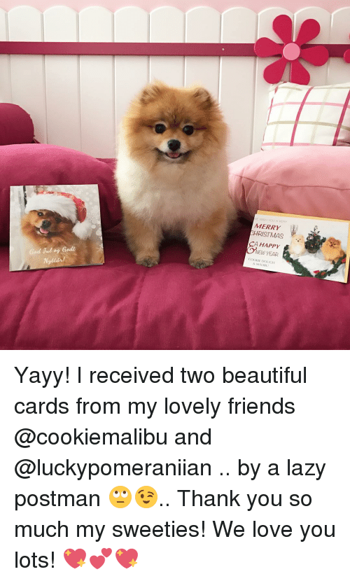 Cookies, Lazy, and Memes: God Jul og Godt  WE WASH YOU A VERY  MERRY  RISTMAS  CA HAPPY  NEW YEAR  COOKIE DOUGH  & MALIBU Yayy! I received two beautiful cards from my lovely friends @cookiemalibu and @luckypomeraniian .. by a lazy postman 🙄😉.. Thank you so much my sweeties! We love you lots! 💖💕💖