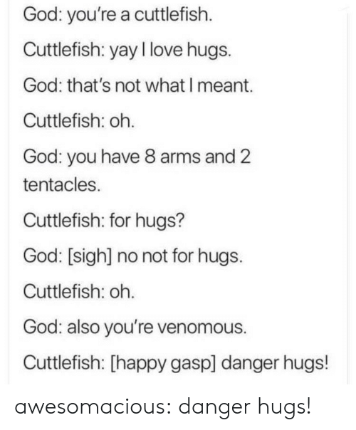 God, Love, and Tumblr: God: you're a cuttlefish  Cuttlefish: yay I love hugs.  God: that's not what I meant.  Cuttlefish: oh.  God: you have 8 arms and 2  tentacles.  Cuttlefish: for hugs?  God: [sigh] no not for hugs.  Cuttlefish: oh.  God: also you're venomous.  Cuttlefish: [happy gasp] danger hugs! awesomacious:  danger hugs!