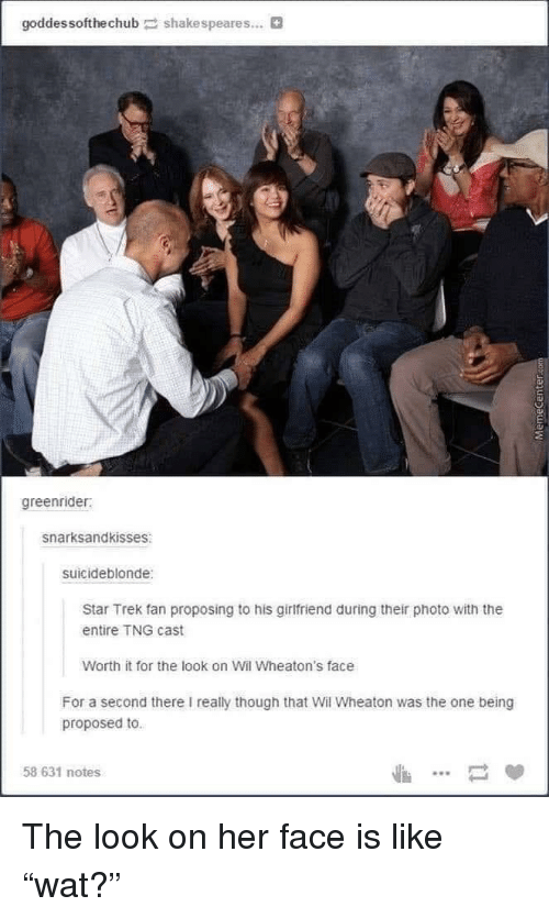 Star Trek, Tumblr, and Star: goddessofthechubshakespeares...  greenrider  snarksandkisses  suicideblonde  Star Trek fan proposing to his girlfriend during their photo with the  entire TNG cast  Worth it for the look on Wil Wheaton's face  For a second there I really though that Wil Wheaton was the one being  proposed to.  58 631 notes