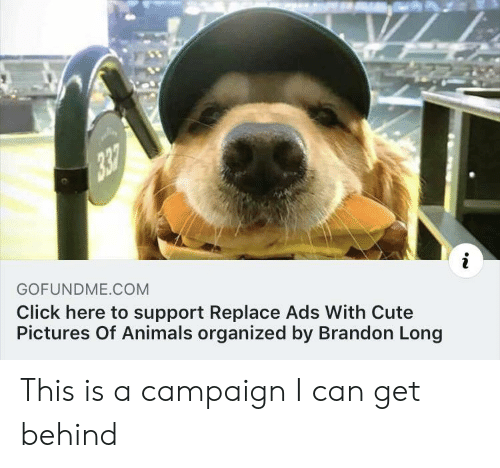 organized: GOFUNDME COM  Click here to support Replace Ads With Cute  Pictures Of Animals organized by Brandon Long This is a campaign I can get behind