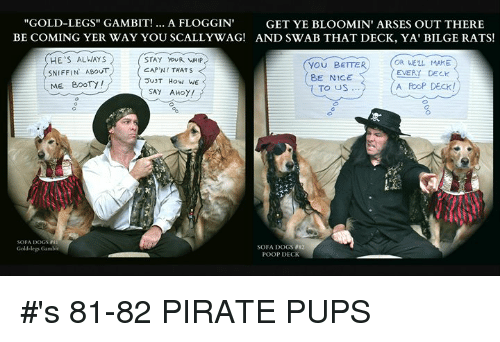 "Booty, Dogs, and Memes: ""GOLD-LEGS"" GAMBIT!.. A FLOGGIN GET YE BLOOMIN' ARSES OUT THERE  BE COMING YER WAY YOU SCALLYWAG! AND SWAB THAT DECK, YA' BILGE RATS!  HE S ALWAYS  SNIFFIN ABOUTCAP'N! THATS  ME BOOTy!  STAY YoUR WHIP  YOU BETTER  8E NICE  OR WELL MAKE  EVERY DECK  JUT How We  SAY AHoy/  A PooP DECK!  TO US  SOFA DOGSS  Gold-legs Gambie  SOFA DOGS 82  POOP DECK #'s 81-82 PIRATE PUPS"