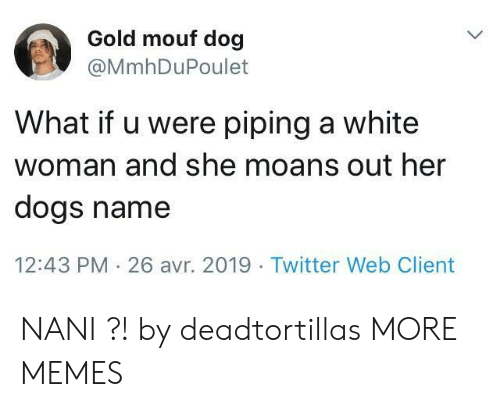 Dank, Dogs, and Memes: Gold mouf dog  @MmhDuPoulet  What if u were piping a white  woman and she moans out her  dogs name  12:43 PM 26 avr. 2019 Twitter Web Client NANI ?! by deadtortillas MORE MEMES