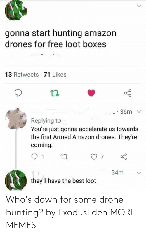 Boxes: gonna start hunting amazon  drones for free loot boxes  13 Retweets 71 Likes  36m  Replying to  You're just gonna accelerate us towards  the first Armed Amazon drones. They're  coming.  34m  they'll have the best loot Who's down for some drone hunting? by ExodusEden MORE MEMES
