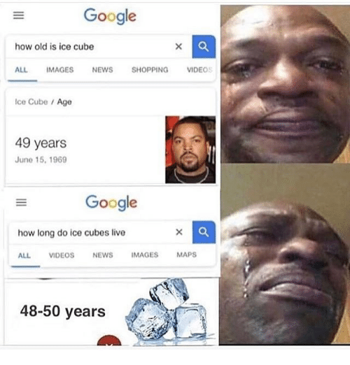 Ice Cubes: Gooale  how old is ice cube  ALL IMAGES NEWS SHOPPING VIDEOS  Ice Cube /Age  49 years  June 15, 1969  Google  how long do ice cubes live  ALL VIDEOSNEWS IMAGES MAPS  48-50 years