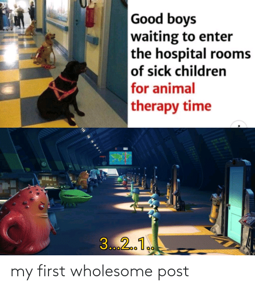 Children, Animal, and Good: Good boys  waiting to enter  the hospital rooms  of sick children  for animal  therapy time  3...2.1. my first wholesome post