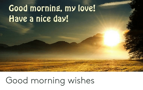 Good Morning My Love Have A Nice Day Good Morning Wishes