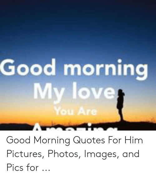 Good Morning My Love You Good Morning Quotes For Him Pictures Photos