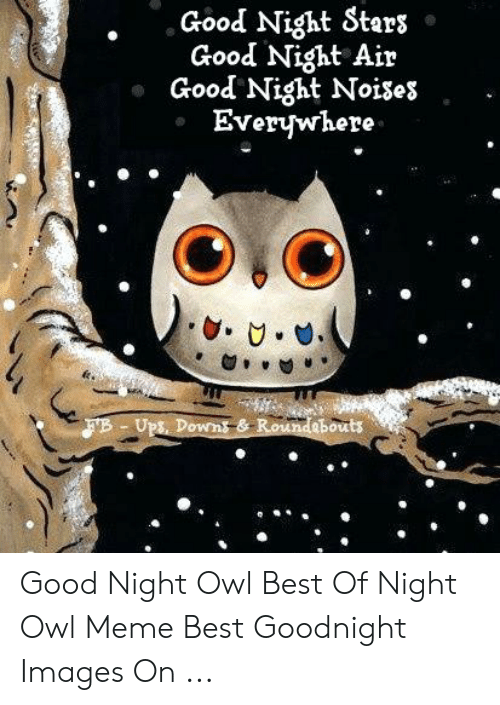 Good Night Sters Good Night Air Good Night Noises Everywhere Fb Ups Downs Roundebouts Good Night Owl Best Of Night Owl Meme Best Goodnight Images On Meme On Awwmemes Com